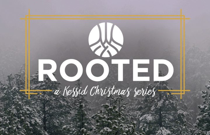 rooted_Christmas_series app copy
